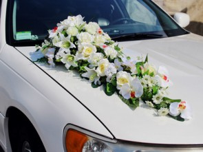 Украшение свадебных автомобилей машины прокат аренда