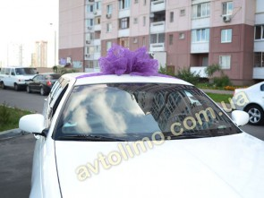 Заказать бант на машину