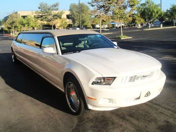 Ford Mustang Limo Cabrio