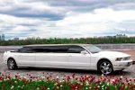 Кабриолет лимузин Ford Mustang Limo Cabrio аренда код 005