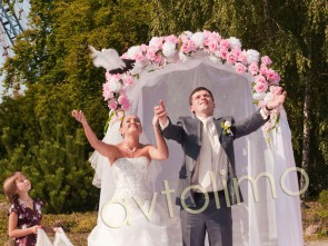 Свадебная арка на прокат розовая