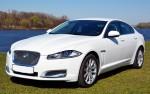 Jaguar XF белый 2014 аренда авто Киев цена