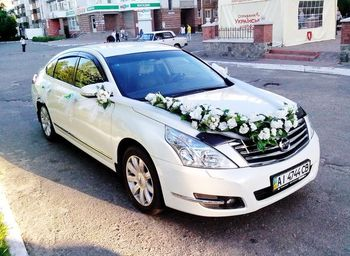 Nissan Teana белая на свадьбу киев
