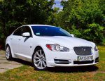 Jaguar XF белый аренда авто Киев цена