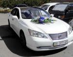 Lexus ES350 белый аренда авто Киев цена