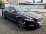 Jaguar XGL бордовый аренда авто